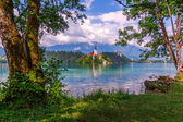 Lake Bled in summer — Stock Photo