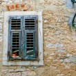 Vintage windows with wood shutters — Stock Photo #63104813