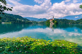 Bled with lake — Stock Photo