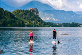 Lake Bled located in Slovenia — Stock Photo