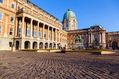 Historic Royal Palace in Budapest — Stock Photo
