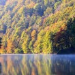 Forest lake morning in autumn — Stock Photo #68732249