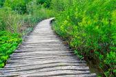 Boardwalk in the park Plitvice lakes — Stock Photo