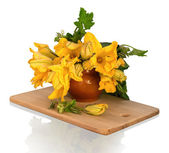 Bouquet of pumpkin flowers in a clay pot — Stock Photo