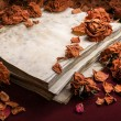 Background in retro style. Dry roses scattered on old book — Stock Photo #53458857