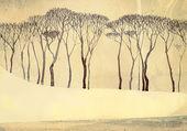 Monochrome winter landscape. Bare trees on quiet lake — Stock Photo