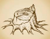 Old tree stump. Vector sketch — Stock Vector