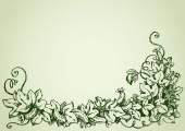 Cucumber vine. Vector drawing — Stock Vector