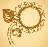 Cute sunflower. Vector drawing — Stock Vector