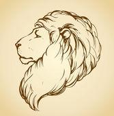 Lion. Vector drawing — Stock vektor