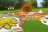 "Annual traditional 59 flower exhibition ""One country"" timed to the Independence Day, celebrated on August 24, 2014  in Kyiv, Ukraine — Stock Photo"