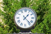 Clock on the green leaves background — Stock Photo