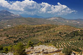 Green hills and valleys around the ruins of Mycenae, Peloponnese, Greece — Stock Photo