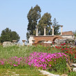 Ruins of st. Johns Basilica in the spring, Selcuk, Ephesus, Turkey — Stock Photo #64465989