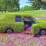 Flower cars exhibition at Spivoche Pole in Kyiv, Ukraine — Stock Photo #64466217
