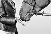 Horsewoman and Horse, Romantic Moments, Black and White — Stock Photo