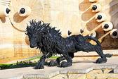 Lion noire — Photo