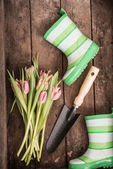 Flower and Garden tools — Stock Photo