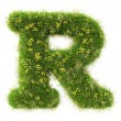 R Letter from the green grass and flowers — Stock Photo #78039732