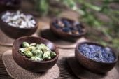 The ancient Chinese medicine — Stock Photo