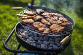 Barbecue in the garden, really tasty dinner! — Stock Photo