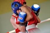 Junior boxing tournament — Stock Photo