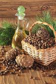 Cedar kegels, noten en cedar notenolie geïsoleerd op een houten tafel — Stockfoto