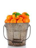 Old Metal Bucket Clementines — Stock Photo