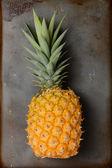 Pineapple Still Life — Stock Photo