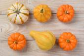 Gourds and Pumpkins High Angle — Stock Photo