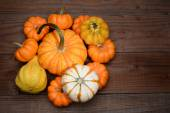 Pile of Gourds and Pumpkins — Stock Photo