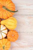 Gourds Pumpkins Vertical — Stock Photo