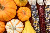 Gourds Indian Corn Filling Frame — Stock Photo