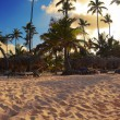 Exotic Beach in Dominican Republic, punta cana — Stock Photo #64344223