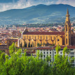 Panorama of old Florence and the church Saint Mary of the Flower — Stock Photo #64595539