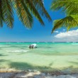 Palm trees on luxury exotic beach — Stock Photo #72712445