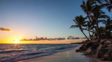 Exotic Beach in Dominican Republic, Punta Cana — Stock Video