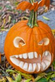 Halloween pumpkin — Fotografia Stock