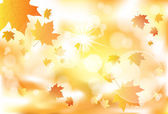 Bright autumn leaves — Stock Vector