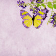 Butterfly and flower on Grunge background — Stock Photo #54259813