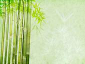 Bamboo on old grunge paper texture background — Stock Photo