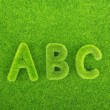 Alphabet letters ABC made from grass with grass background — Stock Photo #54295357