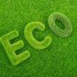 Letters on the green grass background. Eco concept — Stock Photo #54296047