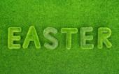复活节在草丛中的拼写 — 图库照片