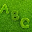 Alphabet letters ABC made from grass — Stock Photo #60987875