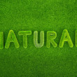Natural word made of green grass — Stock Photo #60988269
