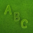 Alphabet letters ABC made from grass — Stock Photo #60989631