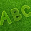 Alphabet letters ABC made from grass — Stock Photo #60989857