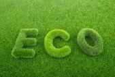Litery na tle zielonej trawie — Zdjęcie stockowe
