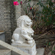 Traditional Chinese stone lion — Stock Photo #68214955